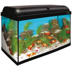 Aqua light 80 litros ica
