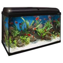 Aqua light 120 litros ica