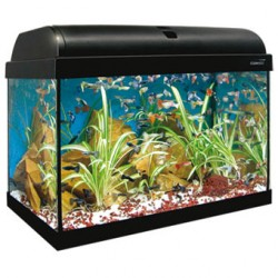 Aqua light 25 litros ica